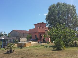 Nice 1 bedroom Finca in Pontedera - Pontedera vacation rentals