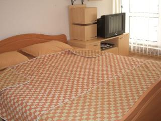 Studio Apt with large terrace - Sunny Beach vacation rentals
