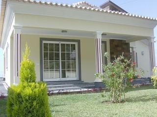 Villa Bonita - Arco da Calheta vacation rentals