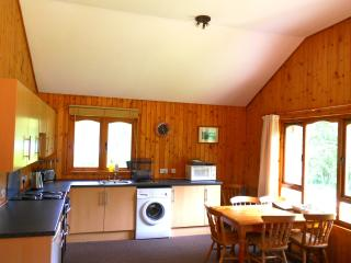 Plodda lodge at Lochletter Lodges - Drumnadrochit vacation rentals