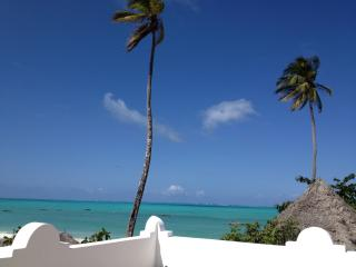 Mwendawima Beach Villa - Zanzibar - Jambiani vacation rentals