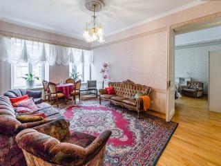 Hermitage 2 steps Spacious apartment Golden tria - Saint Petersburg vacation rentals