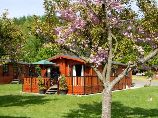 Sandwood Lodge, Rowardennan, Loch Lomond - Rowardennan vacation rentals