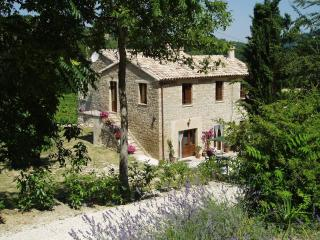 Lovely B&B with Internet Access and Dishwasher - Cupramontana vacation rentals