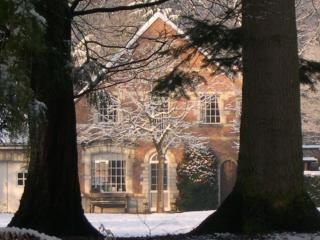 Charming 1 bedroom Cottage in Bruges - Bruges vacation rentals