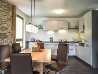 "Appartement ""Alpine Comfort"" - Zell am See vacation rentals"