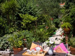 Wisteria Apartment - Zaton vacation rentals