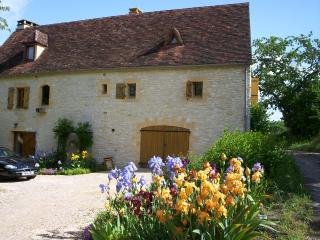 Nice Gite with Television and Fireplace - Gourdon vacation rentals
