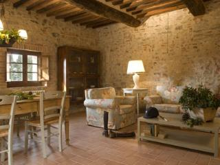 Charming 2 bedroom Condo in Castellina In Chianti - Castellina In Chianti vacation rentals