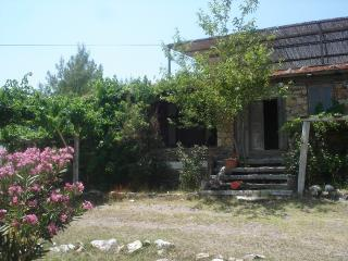 Gokpinar Country Home - Dorttepe vacation rentals
