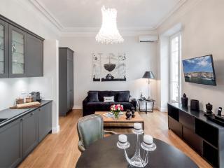 SunlightProperties L'Olive Noir: Modern luxury apt - Nice vacation rentals
