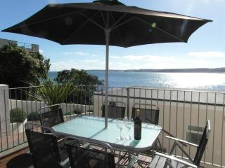 Nice Condo with Outdoor Dining Area and Television - Paignton vacation rentals