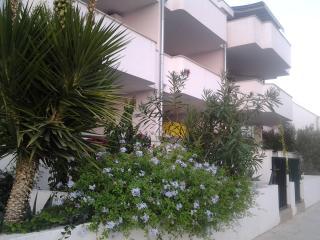 B4, Bijaka Bay - Cove Makarac (Milna) vacation rentals