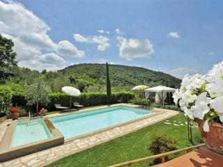 Villa near San Gimignano - Montaione vacation rentals