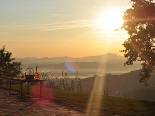 Olio,sole,simpatia.Forestaria! - Villa Basilica vacation rentals