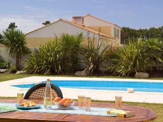 90173 St Jean de Monts villa with private pool - Saint-Jean-de-Monts vacation rentals