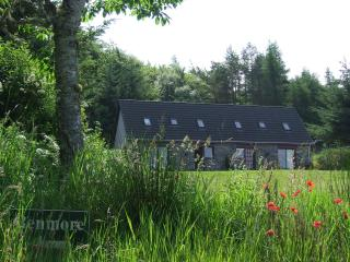 2 bedroom House with Internet Access in Lairg - Lairg vacation rentals