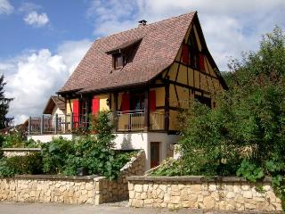 Bright 3 bedroom Gite in Haut-Rhin - Haut-Rhin vacation rentals