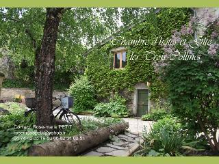 Romantic 1 bedroom Cottage in Meillonnas - Meillonnas vacation rentals