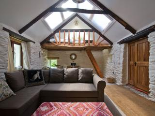 Felindyrch mill studio rural stone barn conversion - Mynachlogddu vacation rentals