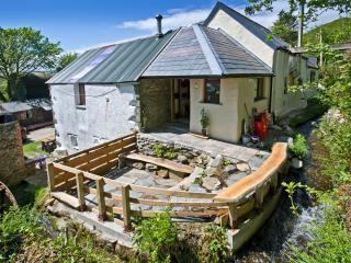 Felindyrch mill studio rural stone barn conversion - Mynachlogddu vacation rentals