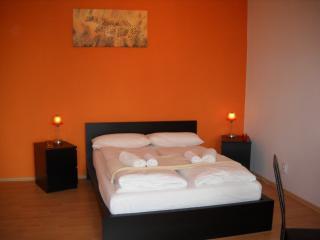 Orange Apartment - Berlin vacation rentals