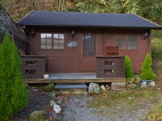 Maple Lodge - Beddgelert vacation rentals