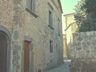Palazzo Contino (XVIc.), in the heart of Civita - Civita di Bagnoregio vacation rentals
