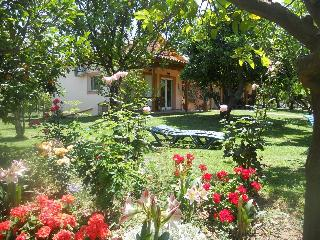 Cozy 2 bedroom Apartment in Aiyion - Aiyion vacation rentals