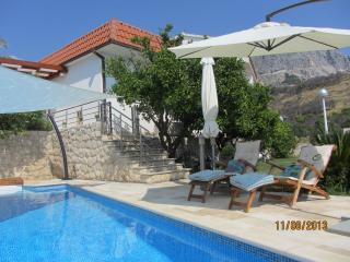 HOLIDAY VILLA OLD OLIVE - Podgora vacation rentals