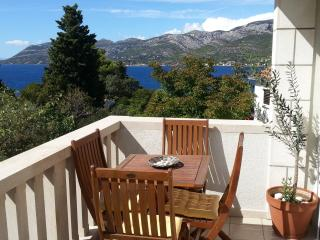 Beautiful Apartment with Dishwasher and A/C in Korcula Town - Korcula Town vacation rentals