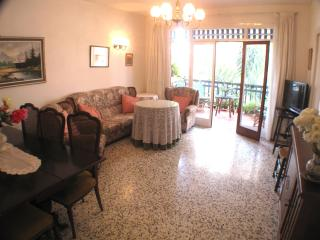 Apartment 2 min from the beach - Almunecar vacation rentals