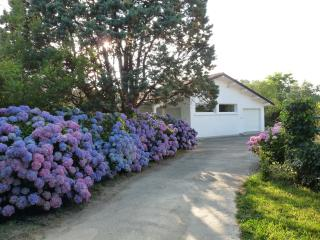 Nice House with Internet Access and A/C - Biarritz vacation rentals