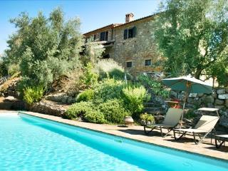 Castellino; elegance, peace and comfort - Lisciano Niccone vacation rentals