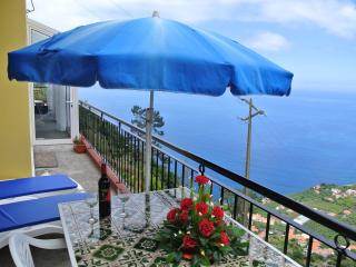 Breathtaking Views house - Arco da Calheta vacation rentals