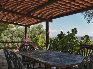 Oliveta: tra mare ed ulivi per una vacanza da sogn - Staletti vacation rentals