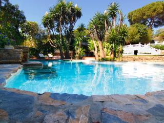 Wonderful Villa with Internet Access and A/C - Marbella vacation rentals