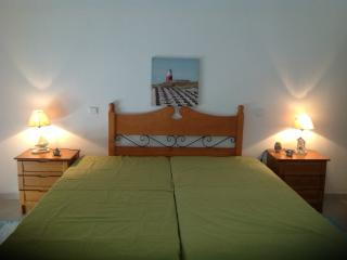 Apartment in Lagoa - Algarve - Lagoa vacation rentals
