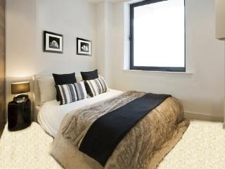Beautiful Islington apartment. Amazing location - London vacation rentals