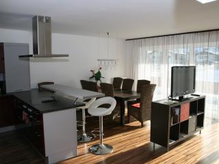 Luxury Appartement Crystal - Schladming vacation rentals