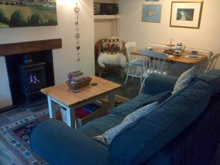 Nice Cottage with Internet Access and Outdoor Dining Area - Blaenau Ffestiniog vacation rentals