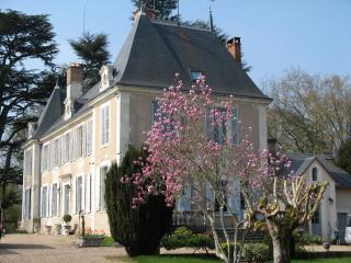 MANOIR DE LA VOUTE suite 4  personnes - Montrichard vacation rentals