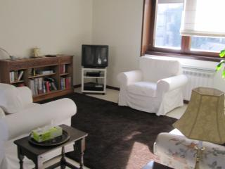 3 BEDROOM CENTRAL NEAR GARDENS - Strasbourg vacation rentals