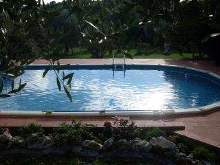 Relax in the countryside of Tuscany - Collodi vacation rentals