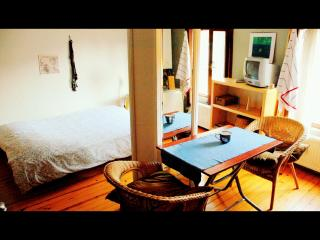 COSY & CENTER STUDIO FLAT1 - Istanbul vacation rentals