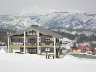 Spacious Ski chalet with Internet Access and Central Heating - Nozawaonsen-mura vacation rentals