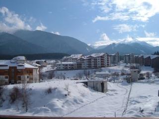 Mountain View Resort StudioB20 - Bansko vacation rentals