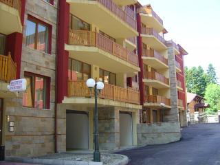 2 bedroom Condo with Internet Access in Govedartsi - Govedartsi vacation rentals