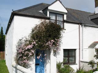 Hyacinth Cottage - Cubert vacation rentals