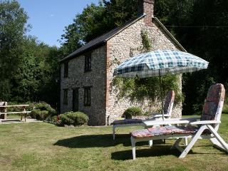 Wonderful Cottage with Internet Access and Satellite Or Cable TV - Hawkchurch vacation rentals